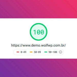 Alta velocidade de carregamento para o seu WordPress